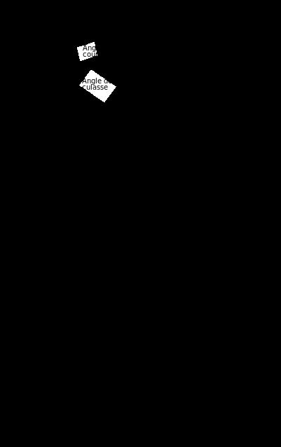 image sur la taille du diamant : méthode Tolkowsky